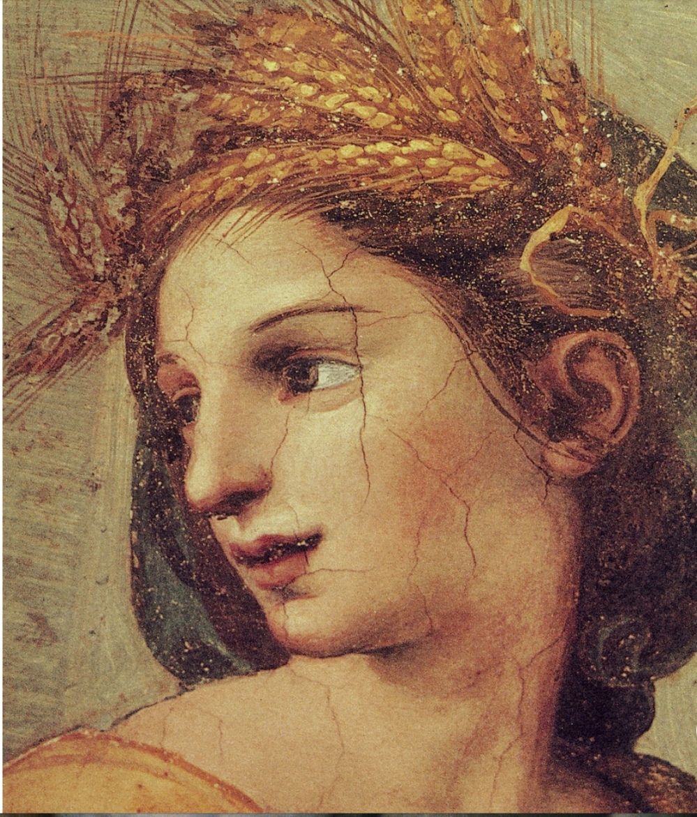 GIOVANNI DA UDINE DETAIL OF HTE HEAD OF CERES FROM THE DECORATION OF THE VILLA FARNESINA ROMA 1518